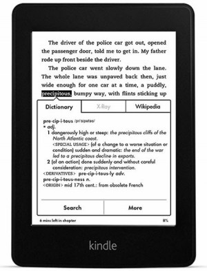 Kindle Paperwhite screen E-Ink 300ppi-3