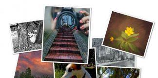 выбрать принтер для печати фотографий дома